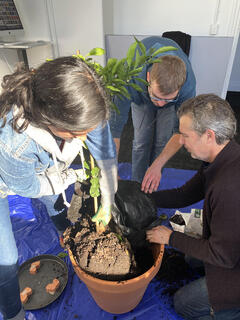 planting-trees-in-the-new-webalite-office-202105